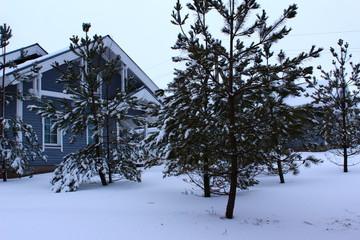 Альпийские дома для 4 человек
