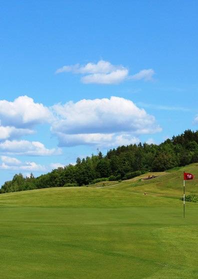 Турнир НОВИЧКОВ 36+ по гольфу